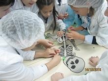 Практикум «Развитие познавательных интересов младших школьников на уроках окружающего мира»