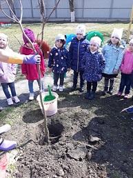 Озеленение и благоустройство города Черкесск